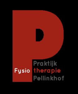 Logo_FysioPFP_web